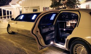 Fort Worth Christmas Lights Tour Limo Rentals, Limousine, Sedan, Van, SUV, Party Bus, Shuttle, Charter, Spirit, Holiday, Trail of Lights, Santa, Dallas, December Nights